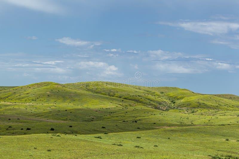 Toczni wzgórza w Montana zdjęcia stock