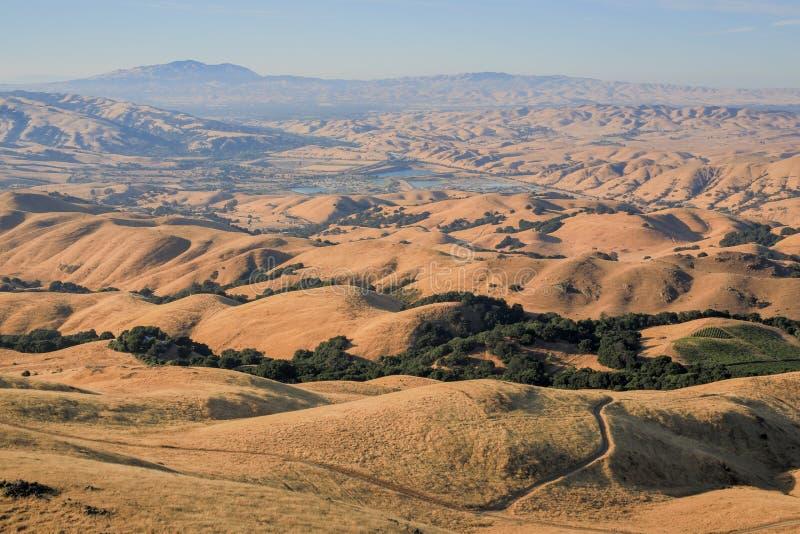 Toczni wzgórza w wschód zatoki Dzielnicowych parkach, Kalifornia zdjęcie stock