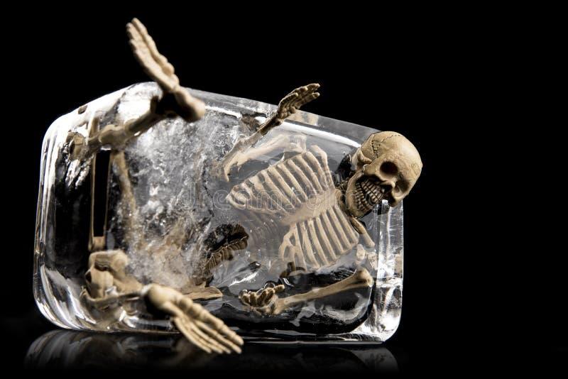 Tod im Eiskonzept, Schädel im Eis lokalisiert stockfotos