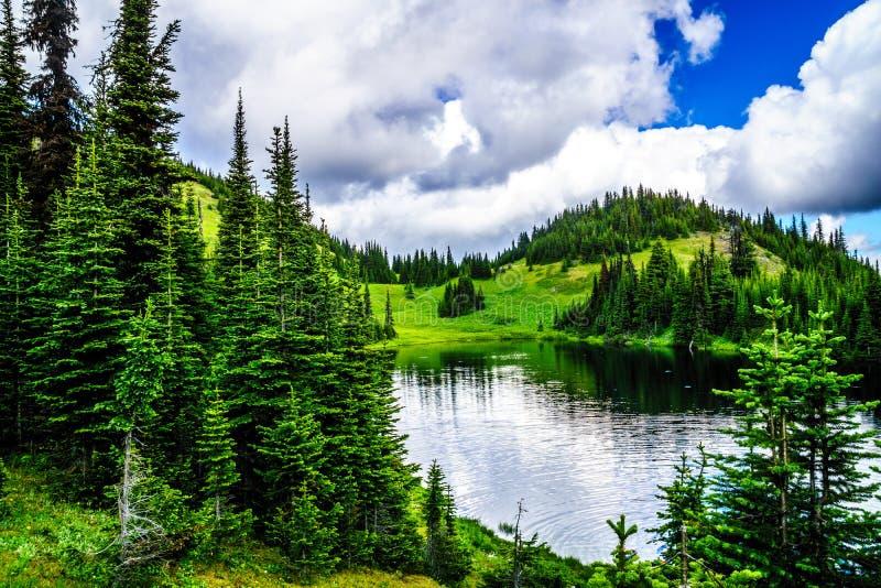 Tod Lake på en höjd av 1995 meter nära överkanten av Tod Mountain i den Shuswap Skotska högländerna fotografering för bildbyråer