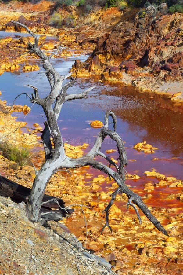 Tod und Verwüstung in Tinto River lizenzfreies stockbild