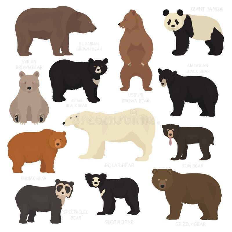 Toda a espécie do urso do mundo em um grupo Coleções dos ursos ilustração stock