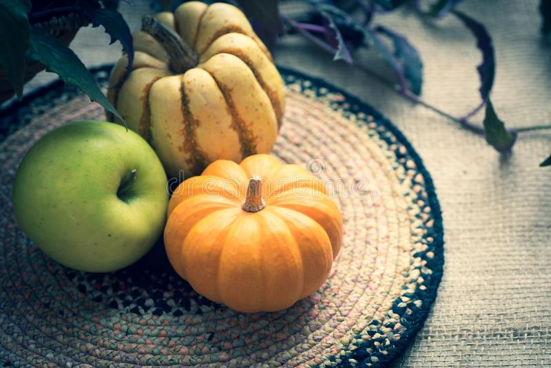 Todavía baja la vida con Mini Pumpkin, la manzana verde y la calabaza dulce de la bola de masa hervida del delicata Un horizontal fotos de archivo libres de regalías