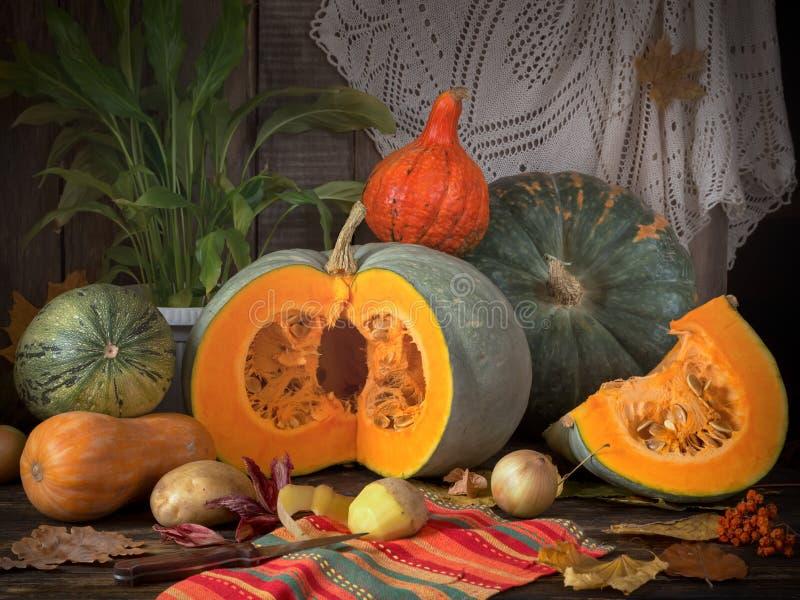Todavía cosecha del otoño de la vida con los diversos tipos de calabazas imagenes de archivo
