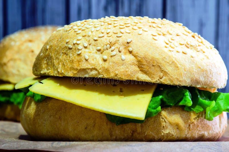 Todavía de la hamburguesa vida imagen de archivo