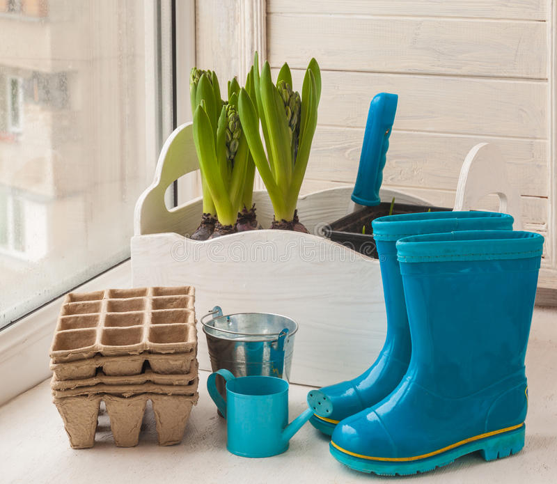 Todavía de la primavera vida con las botas de goma y los jacintos con los brotes imágenes de archivo libres de regalías