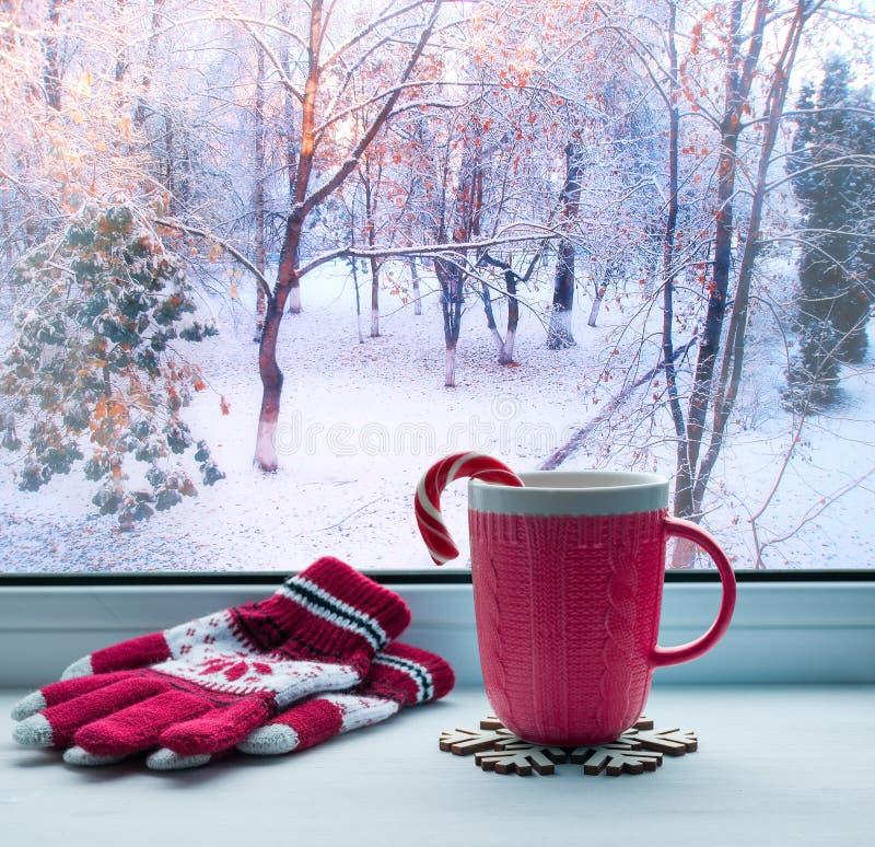 Todavía del invierno vida - taza con el bastón de caramelo en bosque del alféizar y del invierno al aire libre imagen de archivo libre de regalías