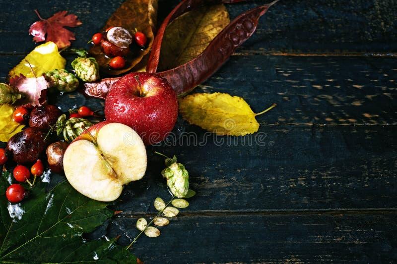 Todavía del otoño vida con Apple en un fondo oscuro foto de archivo