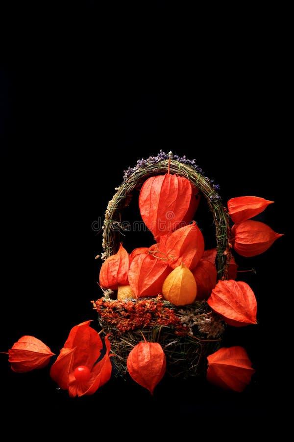 Todavía del otoño vida en un physalis rústico retro del estilo del fondo de madera negro en una cesta fotografía de archivo