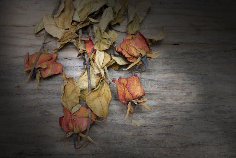 Todavía del vintage fotografía de la vida con la flor secada de la rosa mostrada en el viejo fondo de madera hermoso del tablón m foto de archivo libre de regalías