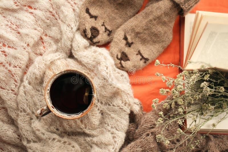 Todavía detalles de la vida de la sala de estar La taza de té en la manta de lana y el inconformista lindo llevan calcetines en l foto de archivo