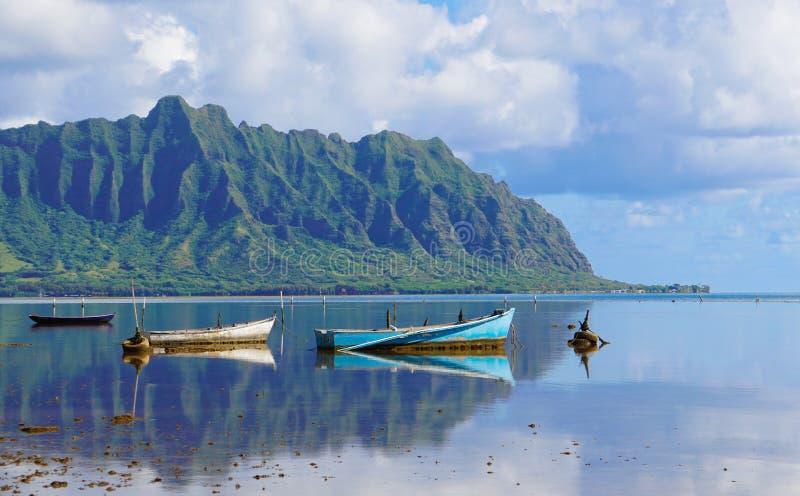 Todavía estilo hawaiano de la vida fotos de archivo libres de regalías