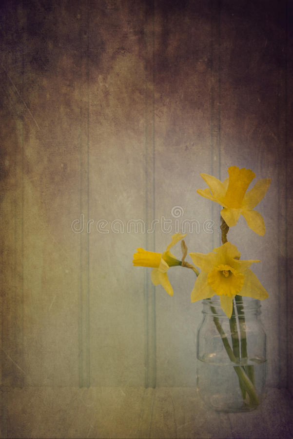 Todavía imagen de la vida de las flores de la primavera con el filtro e de la textura del vintage imagen de archivo