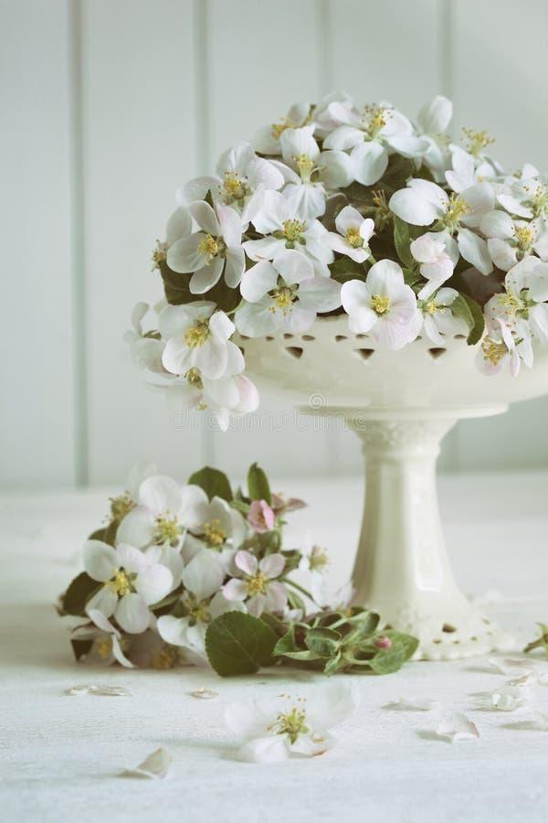 Todavía la vida con la manzana de la primavera florece en florero foto de archivo