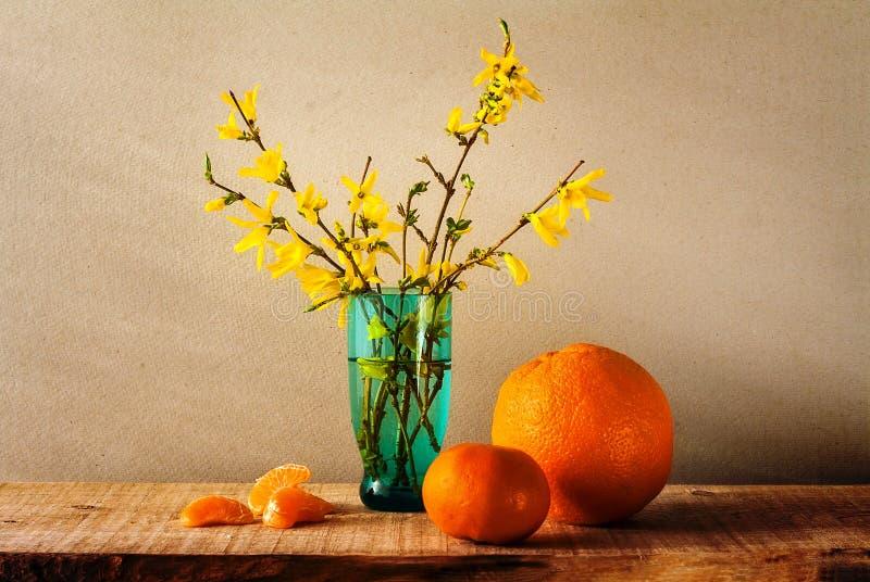 Download Todavía Naranjas De La Forsythia Del Amarillo Del Ramo De La Primavera De La Vida Foto de archivo - Imagen de fine, fruta: 44854090