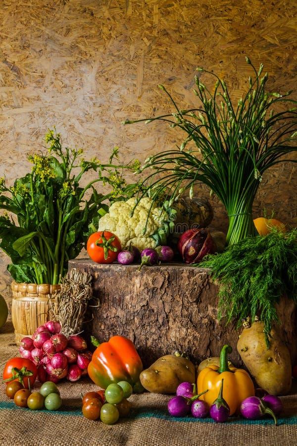 Download Todavía Verduras, Hierbas Y Frutas De La Vida Foto de archivo - Imagen de orgánico, surtido: 41900406