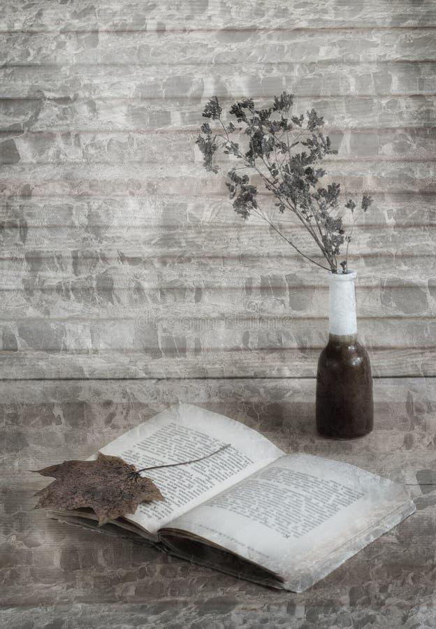 Todavía vida con el libro, la hoja de la caída y la flor seca en fondo factured gris-marrón fotos de archivo