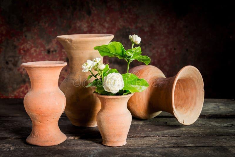 Todavía vida con la flor del jazmín en florero imágenes de archivo libres de regalías