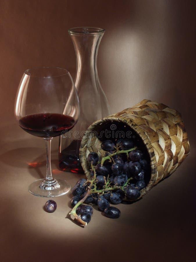 Todavía vida con la vid y el vino foto de archivo