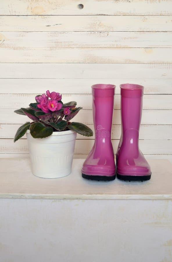 Todavía vida con la violeta y las botas fotografía de archivo libre de regalías