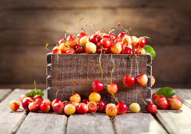 Download Todavía Vida Con Las Cerezas Frescas Foto de archivo - Imagen de rojo, cereza: 42445678