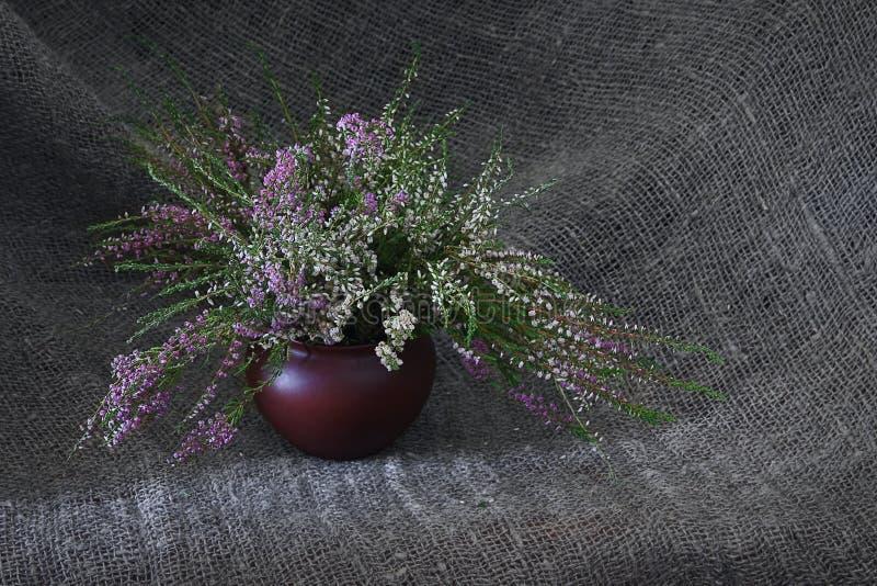 Todavía vida con las flores del brezo fotografía de archivo libre de regalías