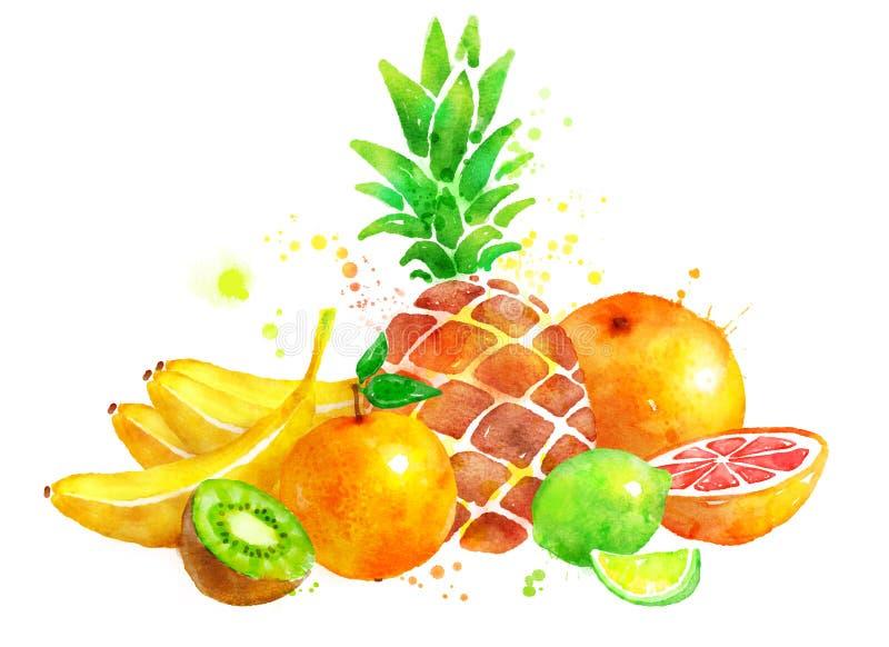 Todavía vida con las frutas stock de ilustración