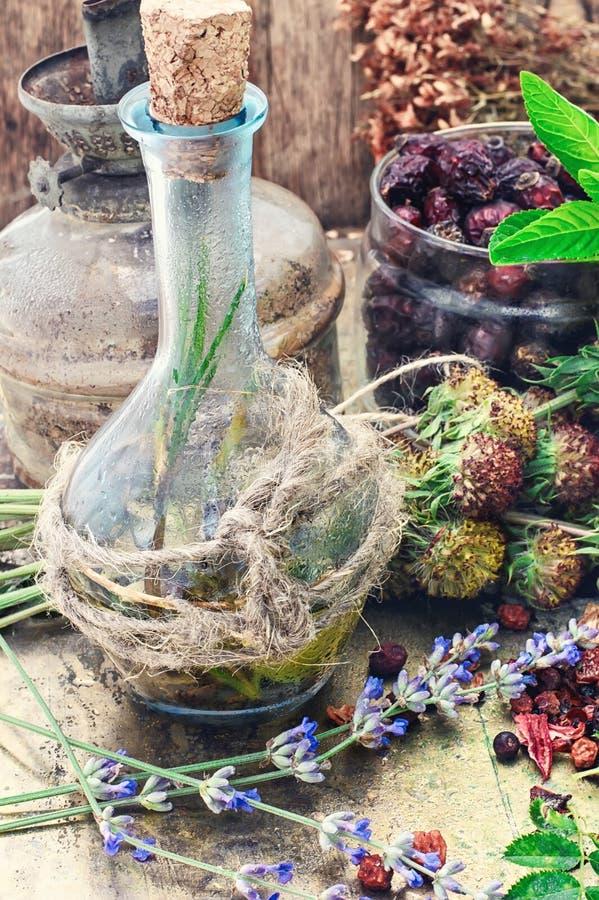 Todavía vida con las hierbas medicinales de la cosecha imágenes de archivo libres de regalías