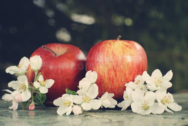 Todavía vida con las manzanas y las flores blancas delicadas fotos de archivo