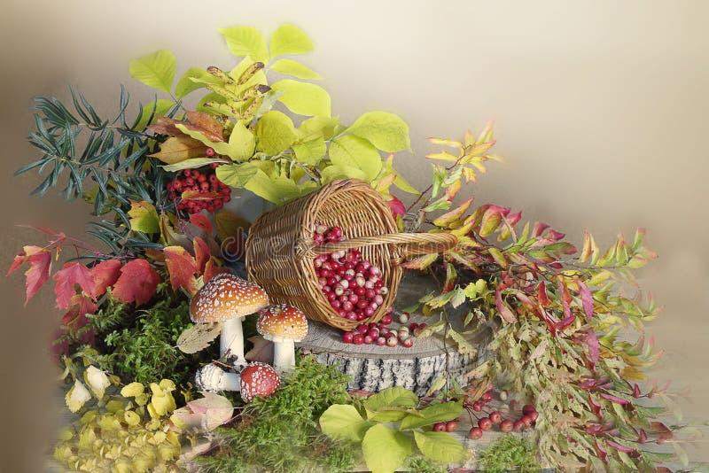Todavía vida con las setas y las bayas, y hojas de otoño fotografía de archivo libre de regalías