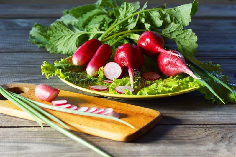 Todavía vida con las verduras de la primavera - rábano, ensalada y cebollas verdes imagen de archivo