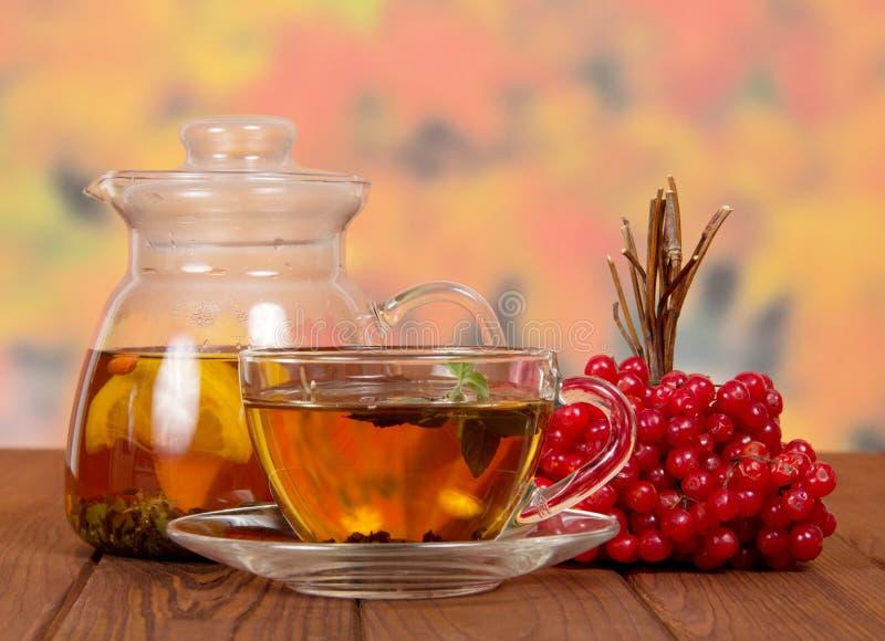 Todavía vida con té del viburnum imágenes de archivo libres de regalías