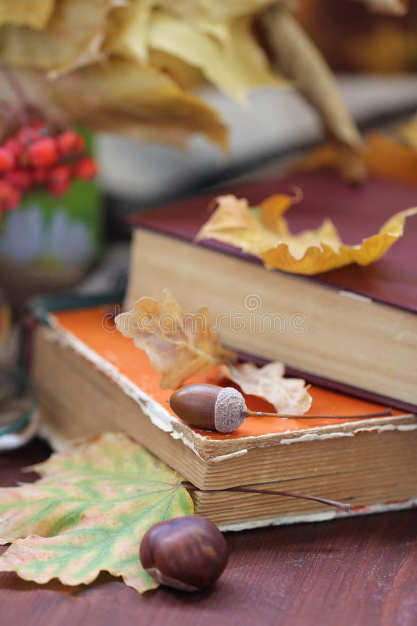 Download Todavía Vida Con Té, Libros Y Hojas En Otoño Imagen de archivo - Imagen de paisaje, ornamento: 44853191