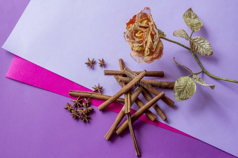 Todavía vida de la rosa, de los palillos de canela artificiales y de las estrellas del anís mintiendo en fondo coloreado foto de archivo