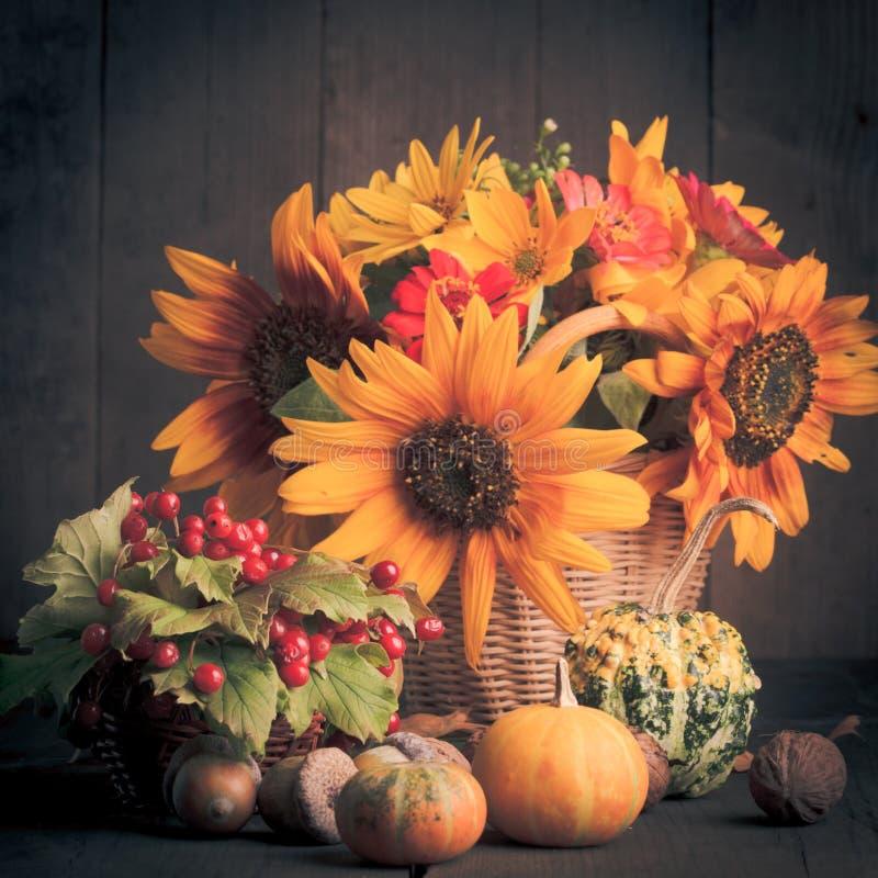 Download Todavía Vida En Colores Del Otoño Foto de archivo - Imagen de bellota, otoño: 41920544