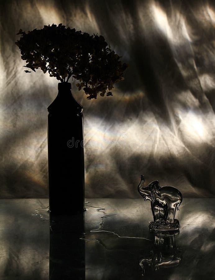 Todavía vida 1 Iluminación de la silueta foto de archivo libre de regalías