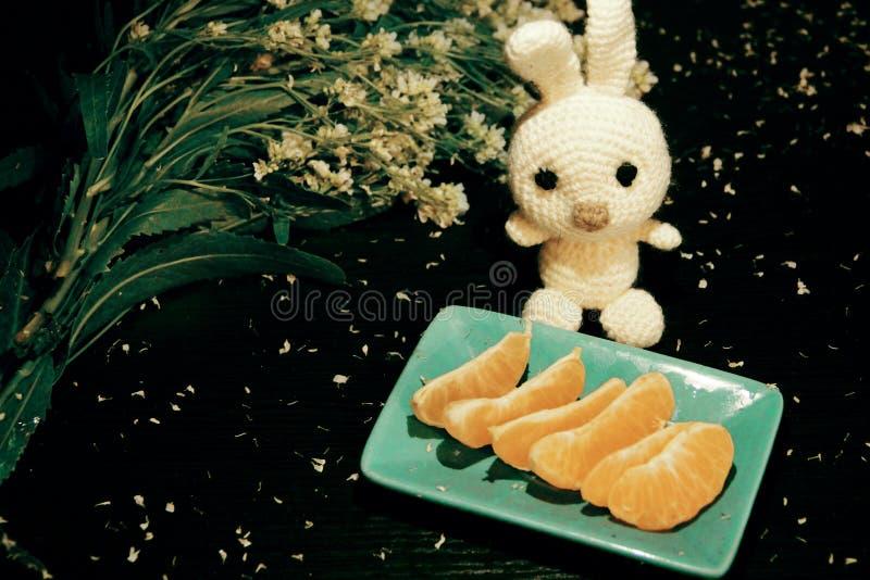 Todavía vida: mandarinas, flores y conejo blanco hecho punto imagen de archivo