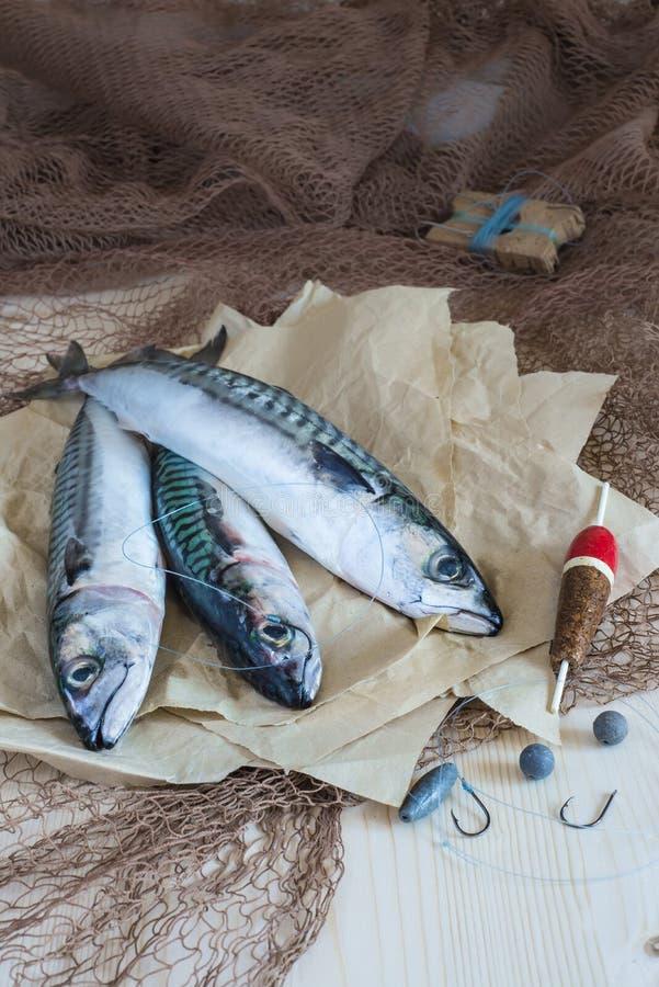 Todavía vida sobre la pesca juguetona para la caballa imagenes de archivo