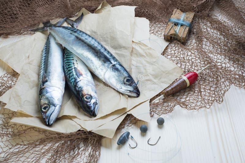 Todavía vida sobre la pesca juguetona para la caballa fotografía de archivo libre de regalías