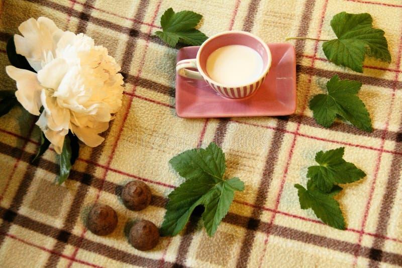 Todavía vida: Taza, hojas, peonía y caramelo fotos de archivo