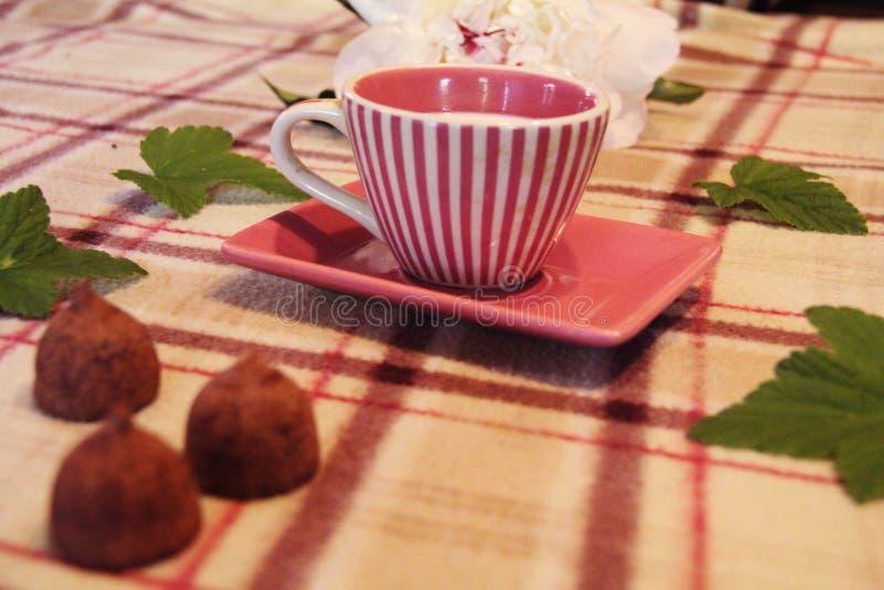 Todavía vida: Taza, hojas, peonía y caramelo imagen de archivo libre de regalías