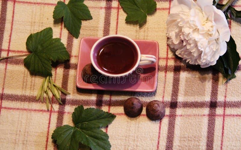 Todavía vida: Taza, hojas, peonía y caramelo imágenes de archivo libres de regalías