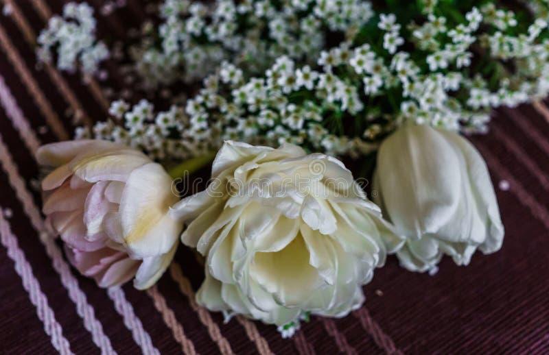 Todav?a vida de tulipanes rosados suaves con las ramitas del spirea fotos de archivo