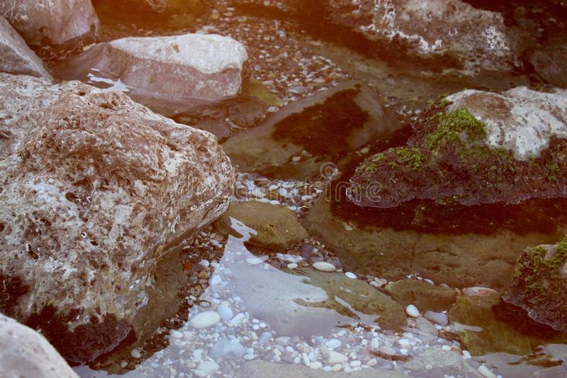 The stones in the water. royalty free stock photography