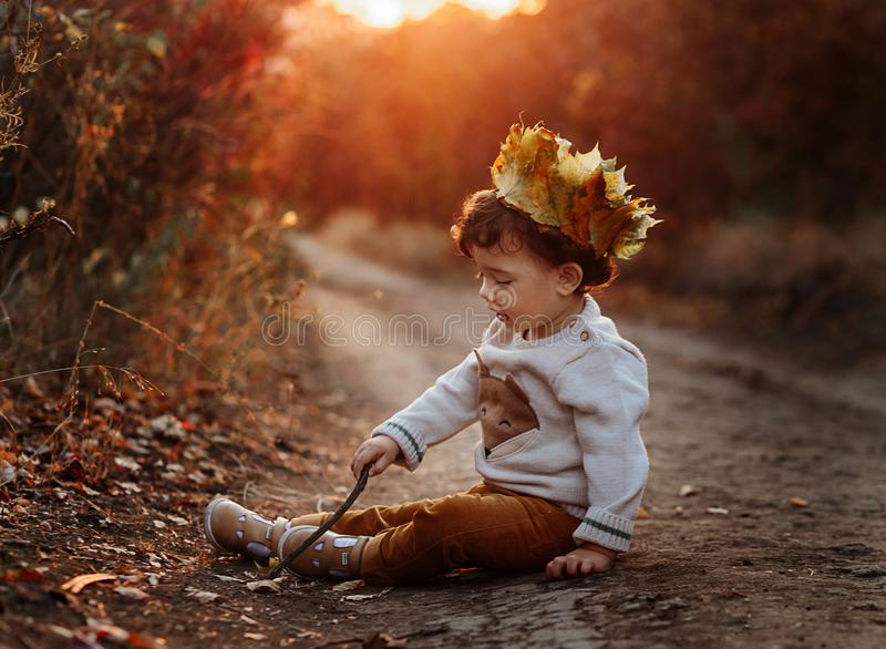 Toddler in the autumn leaves. Beautiful little child on an autumn walk looks at the falling foliage. Baby boy sitting on royalty free stock photography