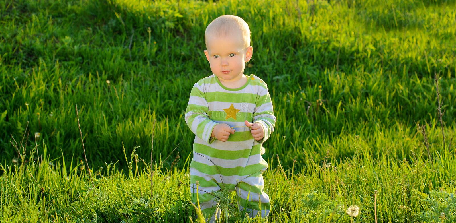 Toddler baby on spring green grass background stock photos