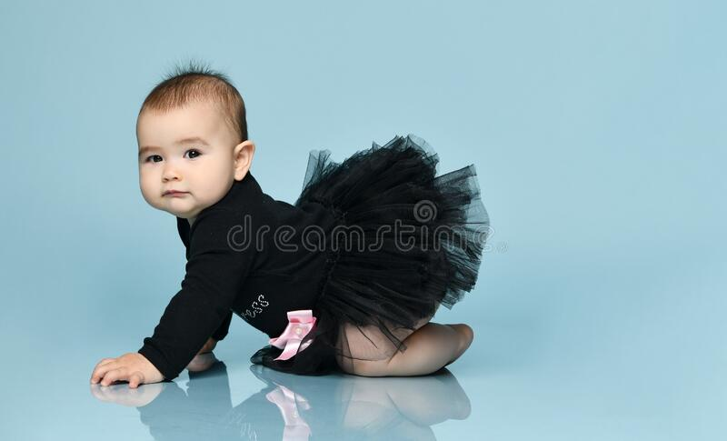 Toddler in black bodysuit with pink bow, poofy skirt, barefoot. She creeping on blue background. Close up, copy space, side view. Toddler in black bodysuit with royalty free stock photo