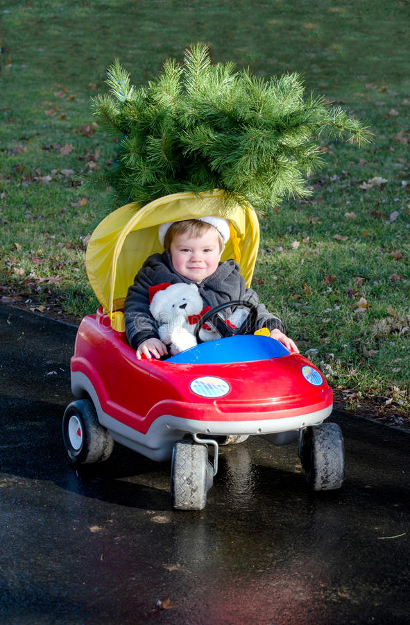 Toddler boy with christmas tree. A toddler boy in a red car toy, drives with a tiny christmas tree on top of his car, and a polar bear co-driver royalty free stock photos