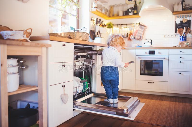 Toddler boy in dangerous situation at home. Child safety concept. Little toddler boy standing on the dishwasher door. Domestic accident. Dangerous situation at stock images