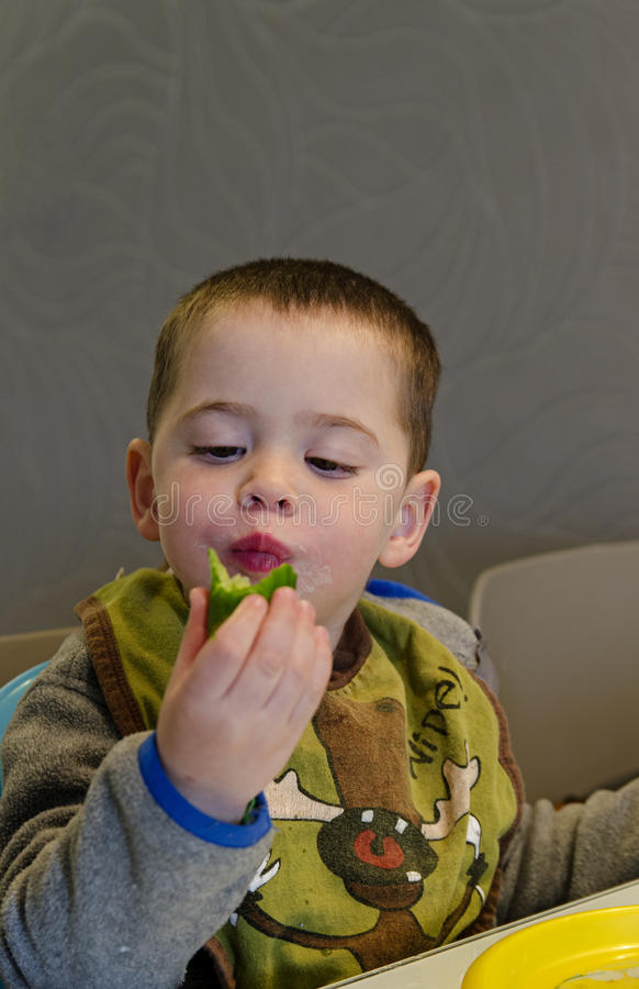 Toddler boy eating a Cucumber stock photos